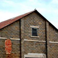 barn-roof-1217017