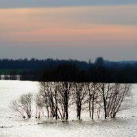 flood-1181763-640x960